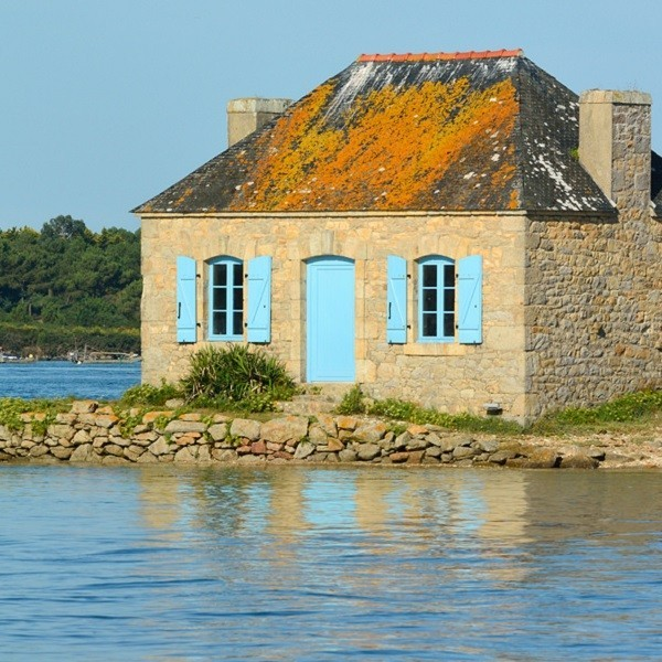 housing law in France